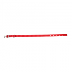Fuss Dog Collare Nylon Rosso