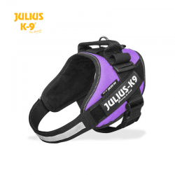 Julius K-9 Pettorina IDC Power Harnesses Viola