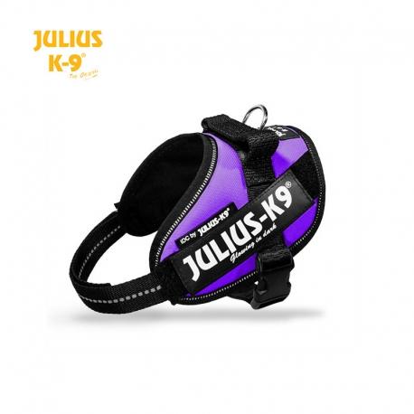 Julius K-9 Pettorina IDC Power Harnesses Viola