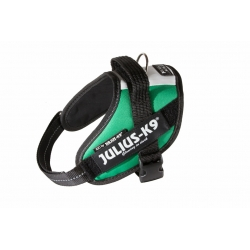 Julius K9 Pettorina IDC Power Harnesses Bandiera Italia