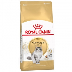 Royal Canin Feline Adult Norwegian Forest 10 Kg