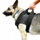 Julius K-9 Rehabilitation Harnesses Anteriore