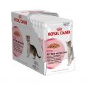Royal Canin Kitten Instinctive in Salsa Busta 12x 85 gr