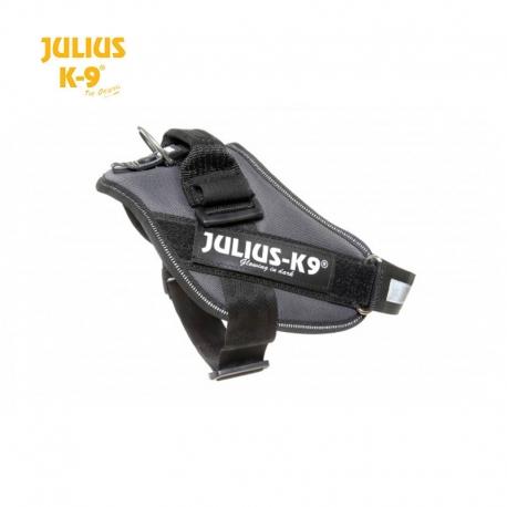 Julius K9 Pettorina IDC Power Harnesses Raimbow