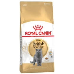 Royal Canin Feline Breed Nutrition British Shorthair Adult 4 kg