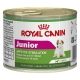 Royal Canin Junior Beauty Mini conf. 12x195 gr