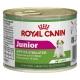 Royal Canin Junior Beauty Mini conf. 12x195 gr