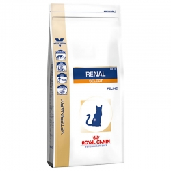 Royal Canin Gatto RSE 24 Renal Select 4 Kg